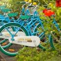 21-bikes