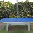 bikini-ping-pong