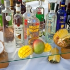 tropical-libation-station